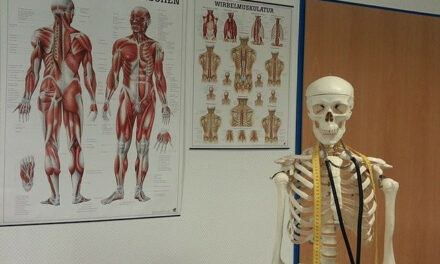 Difference Between Muscle Pain and Bone Pain
