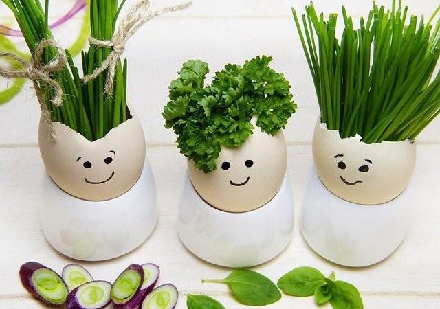 Best 15 Herbs for Diabetic Neuropathy