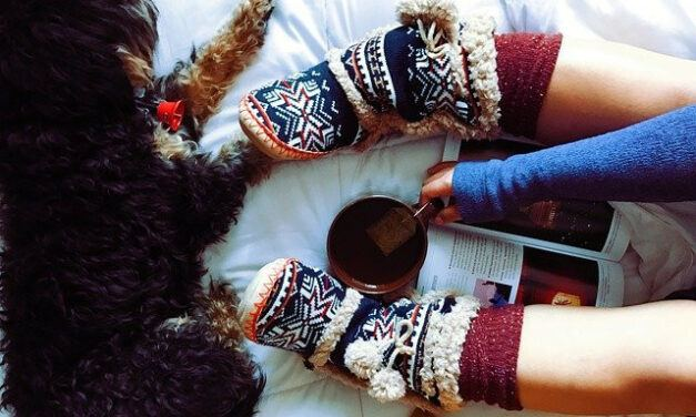 13 Best Slipper Socks for Diabetics
