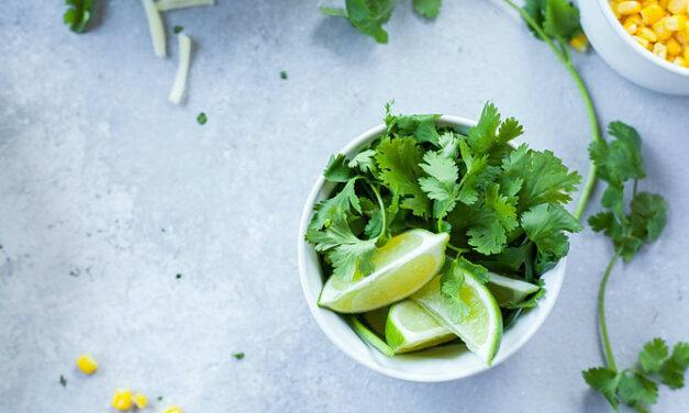 Coriander and Diabetes – How to Use Coriander for Diabetes?
