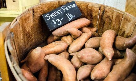Sweet Potatoes and Diabetes – Is Sweet Potato Good for Diabetics?